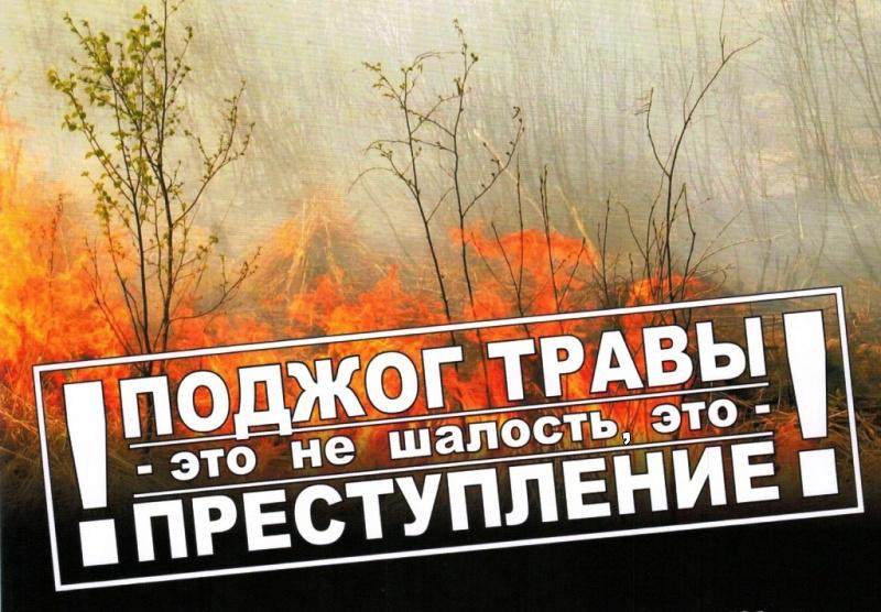 За пал травы предусмотрена ответственность!