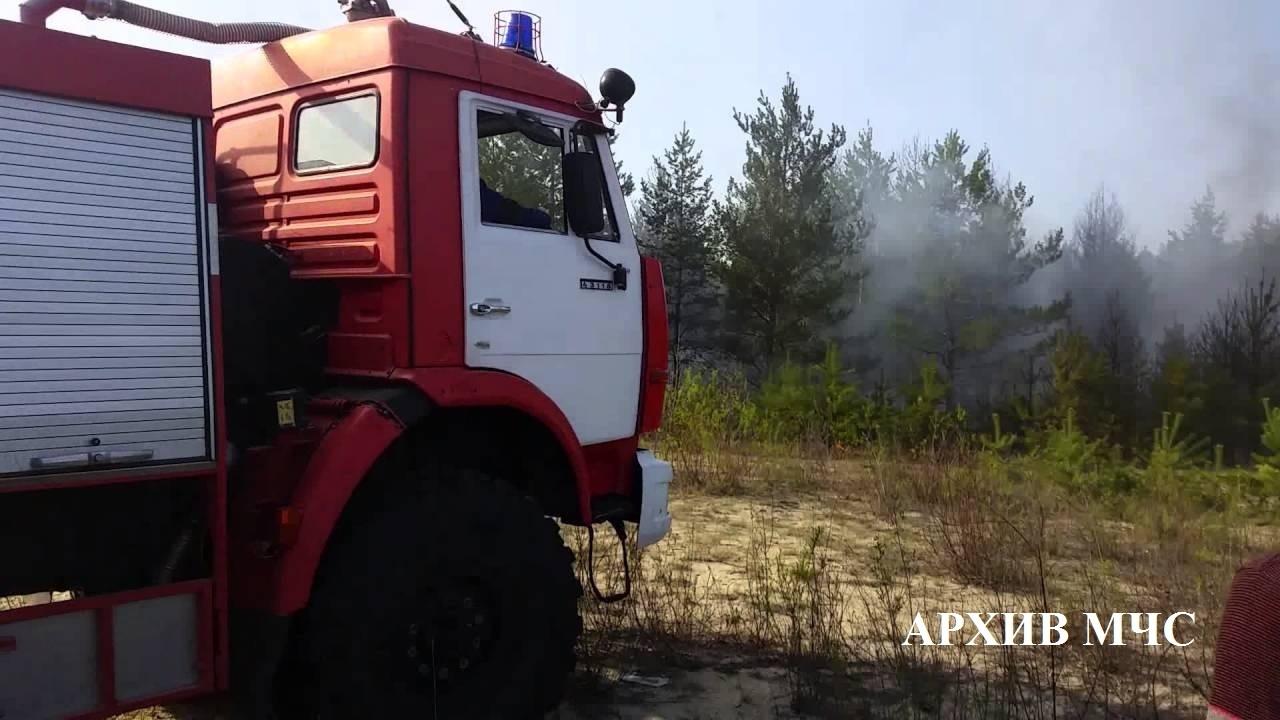 Пожар в лесном массиве Шарьинского района