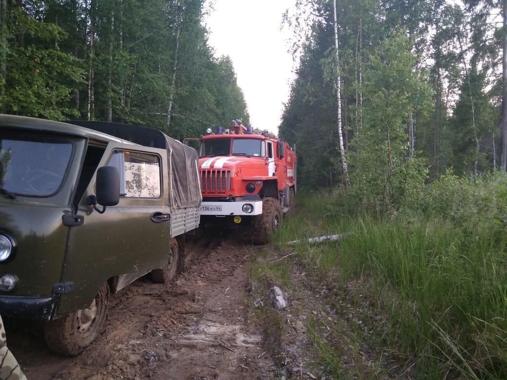 Лесной пожар в Мантуровском районе локализован