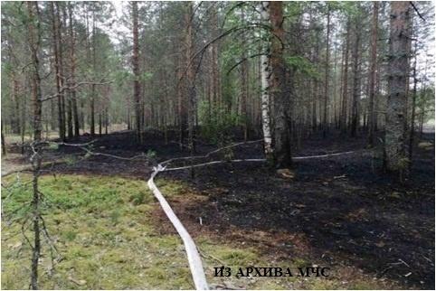 Лесной пожар в Макарьевском районе, Унженское участковое лесничество