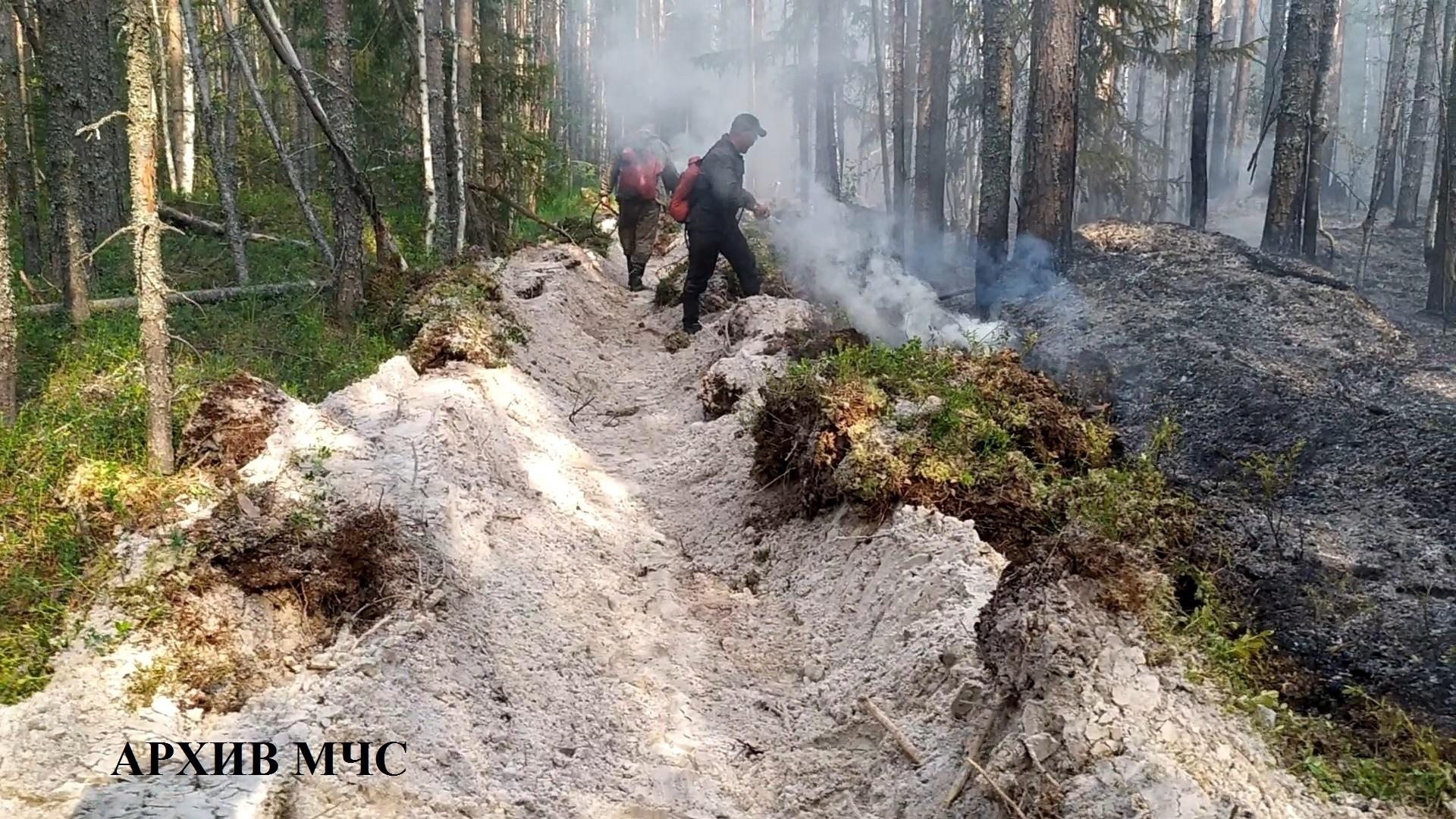 Лесной пожар в Октябрьском районе