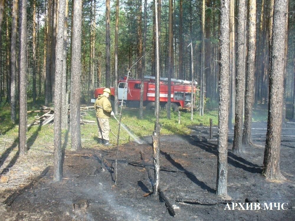Лесной пожар в Кологривском районе, Октябрьское лесничество